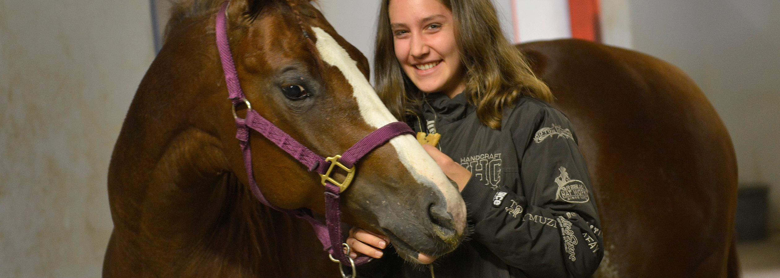 Header_HorseAcademy_AGA3119