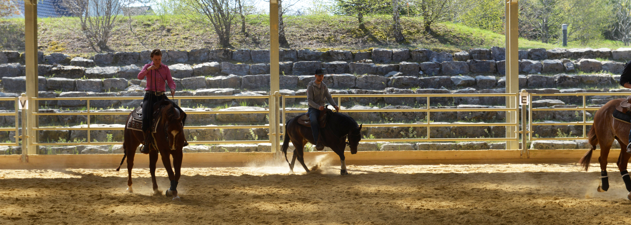 Header_HorseAcademy_AGA4091