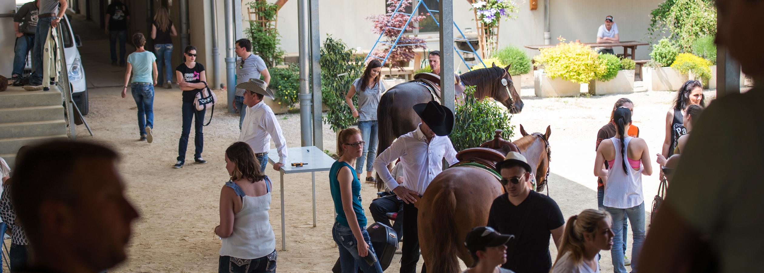 Header_HorseAcademy_D40_6493