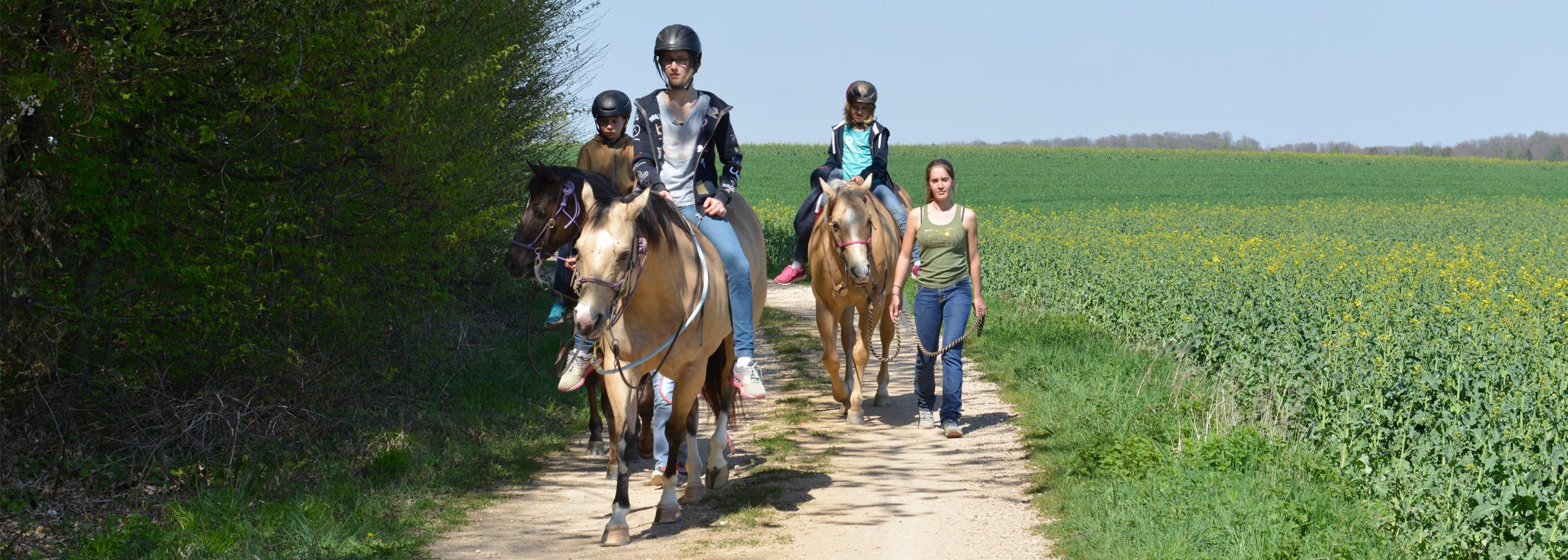 Header_HorseAcademy_Anlage-21