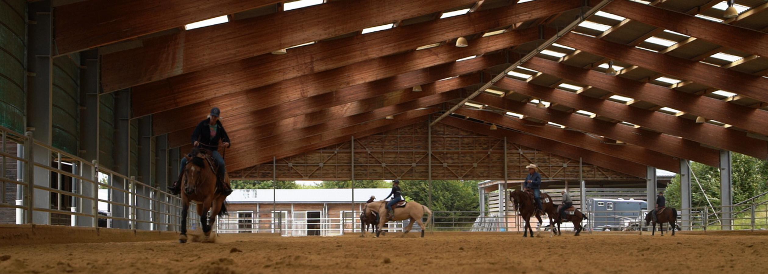 Header_HorseAcademy_Anlage-4