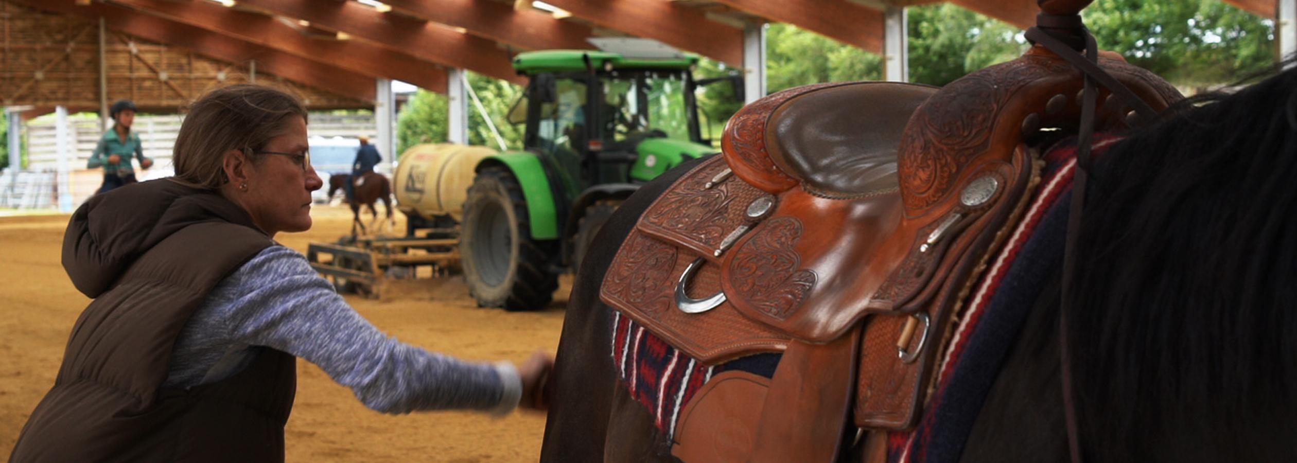 Header_HorseAcademy_Anlage-5