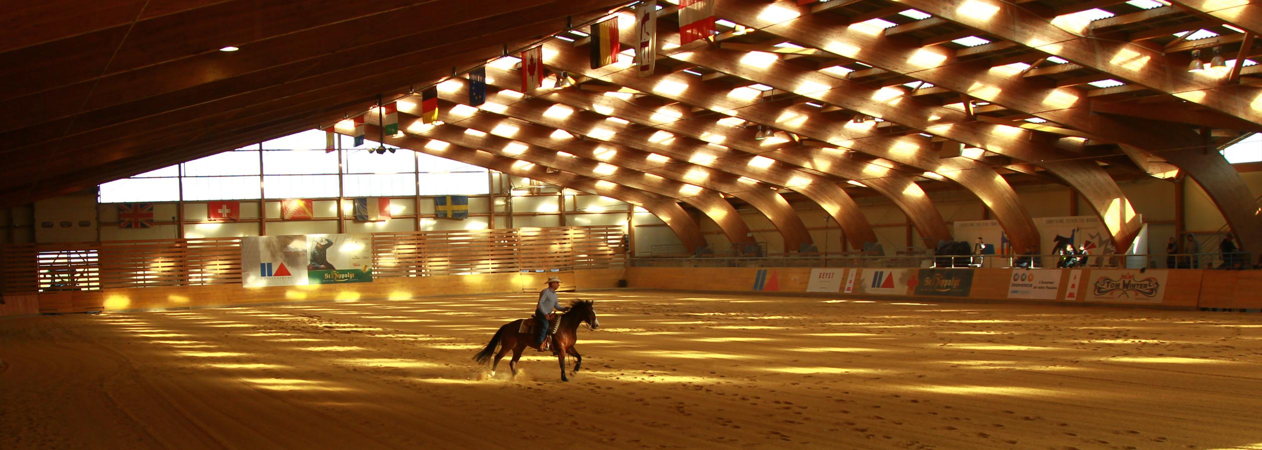 Header_HorseAcademy_Anlage-7