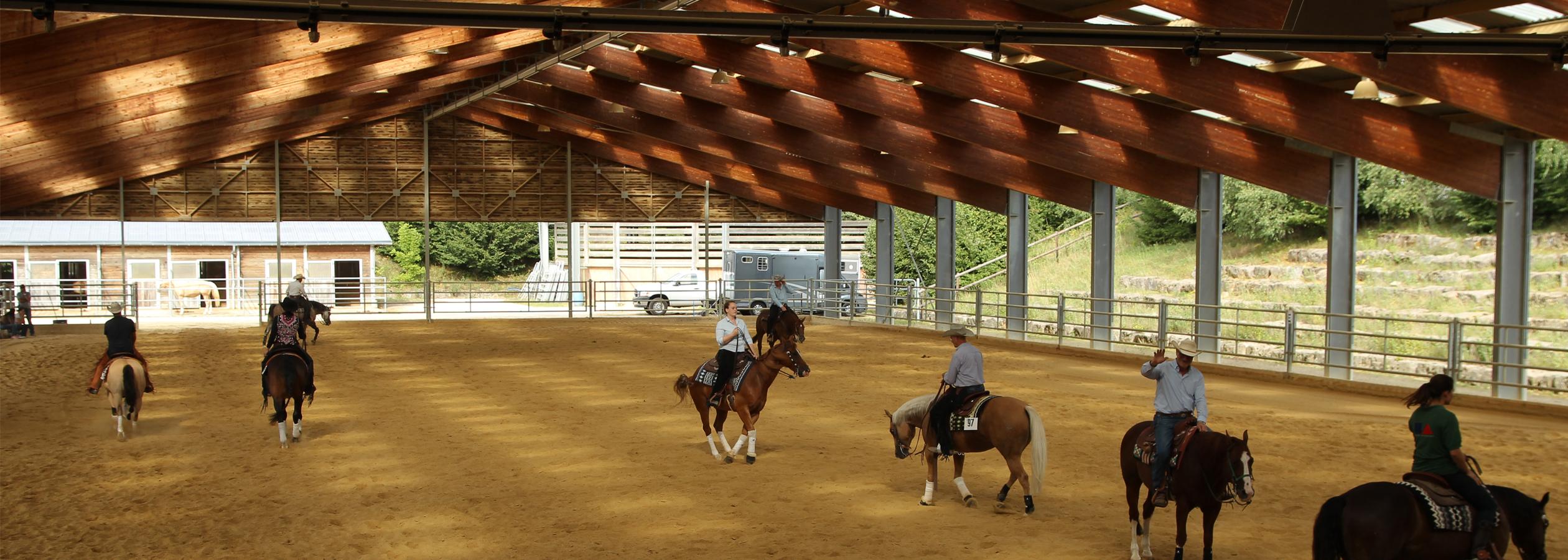 Header_HorseAcademy_Anlage-8