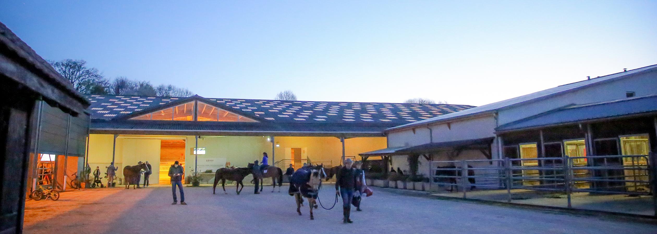 Header_HorseAcademy_Anlage-9