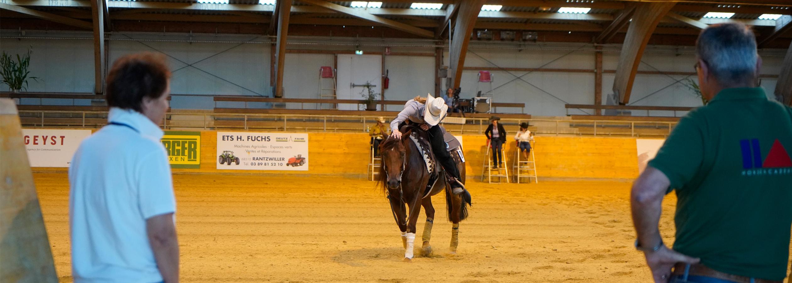 Header_HorseAcademy_Kalender-14