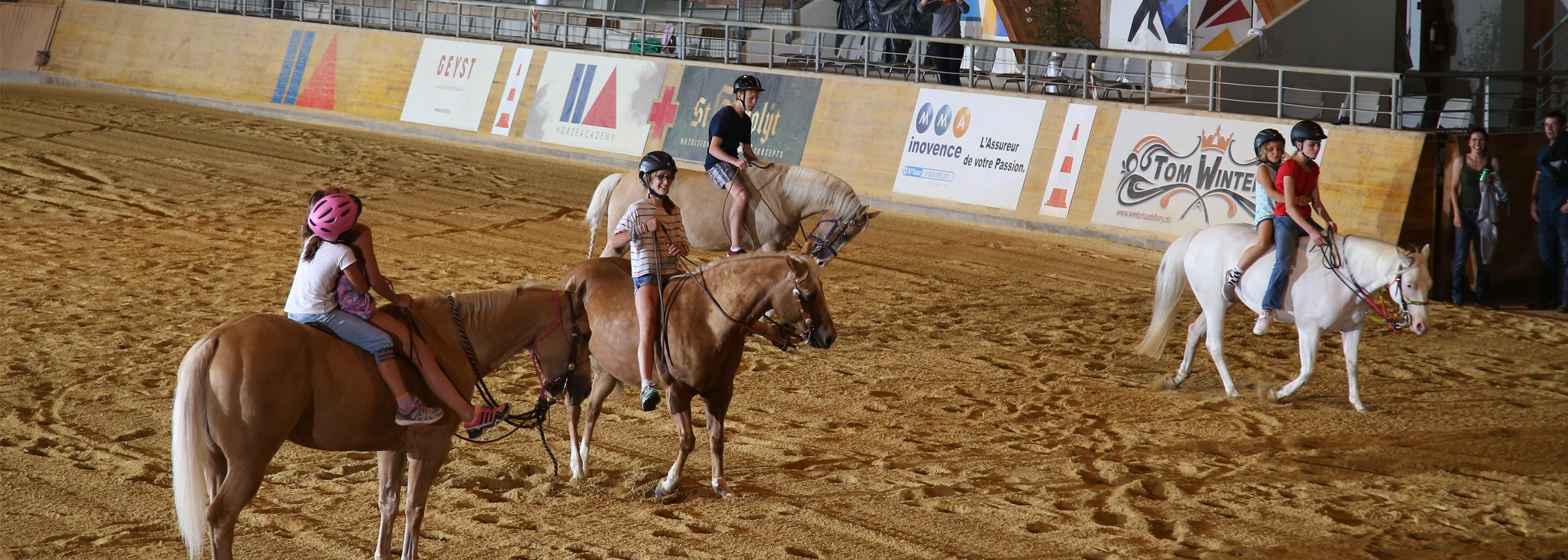 Header_HorseAcademy_Kalender-5